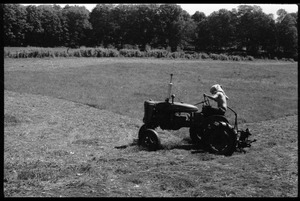 Thumbnail of Tony Mathews driving a tractor in the fields, Montague Farm Commune