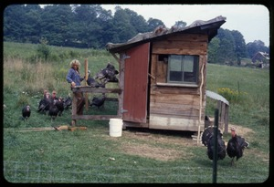 Thumbnail of Janice Frey by the turkey coop, Montague Farm Commune