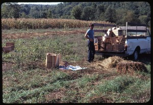 Thumbnail of Tony Mathews with a pickup truck full of crates for harvesting, baby Phoebe on             the ground, Montague Farm Commune