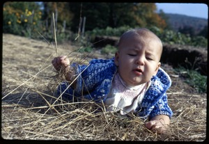 Thumbnail of Phoebe Mathews as an infant, crawling in the hay, Montague Farm Commune