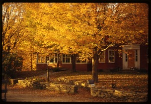 Thumbnail of House and trees in high fall color, Montague Farm Commune