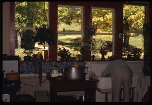 Thumbnail of Susan Kramer washing her hair in the kitchen sink, Montague Farm Commune