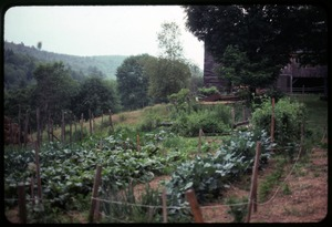 Thumbnail of Garden, Montague Farm Commune