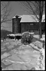 Thumbnail of Pig in the pen near the barn in winter, Montague Farm commune