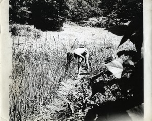 Thumbnail of Anna in the garden, Montague Farm Commune