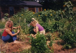 Thumbnail of Janice Frey and Karen Guilette in the garden, Montague Farm Commune