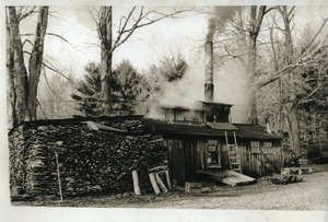 Thumbnail of Ripley sugarhouse during boiling, near Montague Farm Commune