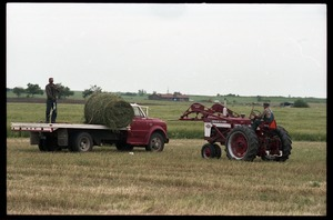 Thumbnail of Tractor loads bales of alfalfa onto a flatbed truck