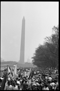 Thumbnail of Crowd packed onto the National Mall, watching the 25th Anniversary of the March on Washington Washington Monument in the background