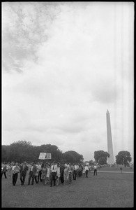Thumbnail of Marchers on the National Mall carrying anti-war signs, heading toward the U.S.             Capitol building (Washington Monument in the background) David Dellinger (front left) being interviewed by news media and Staughton             Lynd (with bullhorn) at head of march