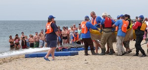 Thumbnail of International Fund for Animal Welfare volunteers carry a stranded dolphin toward         the water