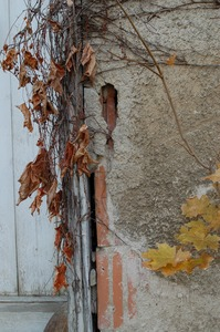 Thumbnail of Eroded stucco next to entrance to the Cow Barn Brooks Barn Complex, UMass Amherst