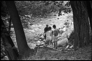 Thumbnail of JFK Lower (UMass Amherst dormitory) picnic at Look Park Students at the edge of the creek