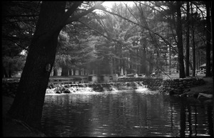 Thumbnail of JFK Lower (UMass Amherst dormitory) picnic at Look Park Waterfall