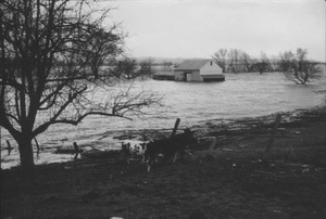 Thumbnail of Flooded barn in field