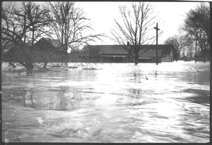 Thumbnail of Flooded buildings and street