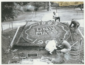 Thumbnail of Four unidentified men working on a planting display for the Centennial on Boston Common