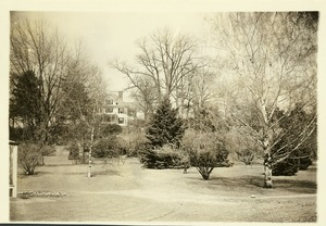 Thumbnail of Rhododendron Garden View of garden with Hillside House (President's House) in background