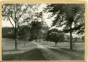 Thumbnail of Stockbridge Road, Massachusetts Agricultural College