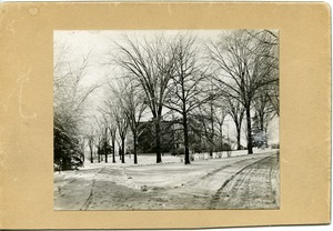 Thumbnail of View up the Avenue with Old Chapel, Massachusetts Agricultural College