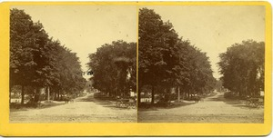 Thumbnail of Horse and carriage on North Pleasant Street
