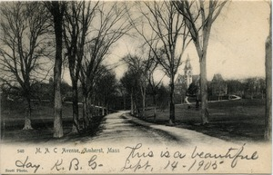 Thumbnail of M.A.C. Avenue, Amherst, Mass.