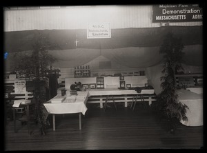 Thumbnail of Agricultural education exhibit, Massachusetts Agricultural College