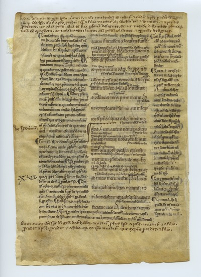 Testamentum Novum, Cum Glossis Bedae, Hieronymi, et Gregorii [New Testament]. Switzerland(?). Latin text in revived Carolingian script