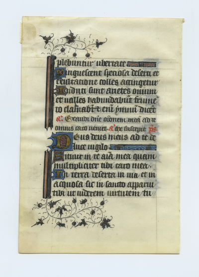 Horae Beatae Mariae Virginis [Book of Hours]. Northern France. Latin text in angular gothic script