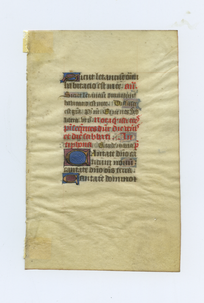 Horae Beatae Mariae Virginis [book of Hours]. France. Latin text in angular gothic script