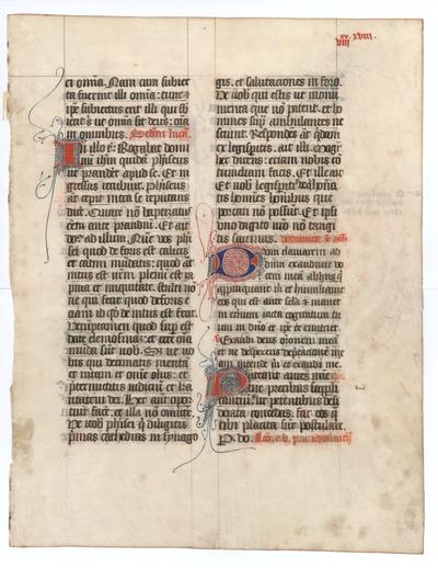 Missale Lemovicense Castrense [Missal]. France (Limoges). Latin text in angular gothic script