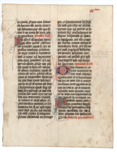 Missale Lemovicense Castrense [Missal]. France (Limoges). Latin text in angular gothic script