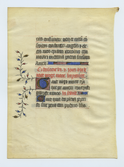 Horae Beate Mariae Virginis [Book of Hours]. France. Latin text in gothic script