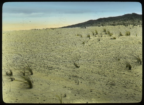 Arid expanse with hill in background, ca. 1930