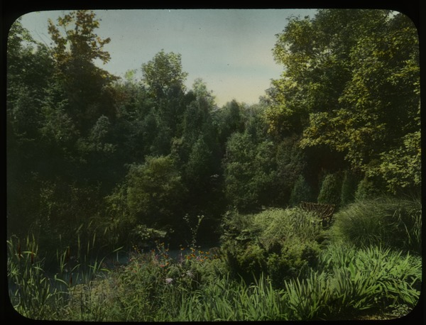 Private Garden by Jens Jensen (Aquatic plants, surrounding trees and shrubs), undated