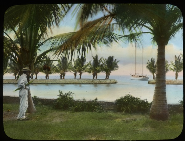 Cocoanut Grove (coconut palms, man looking out at water, boat), undated