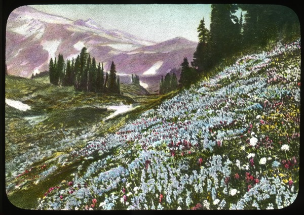 Mount Rainier National Park, ca. 1930