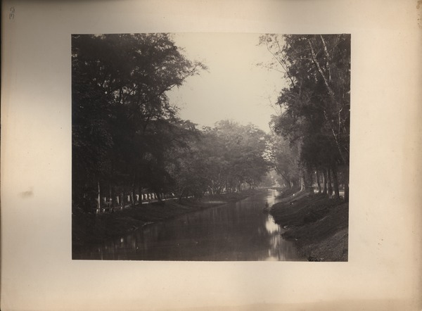 River at Tanah Abang from Bridge in Front of Our House, ca. 1865