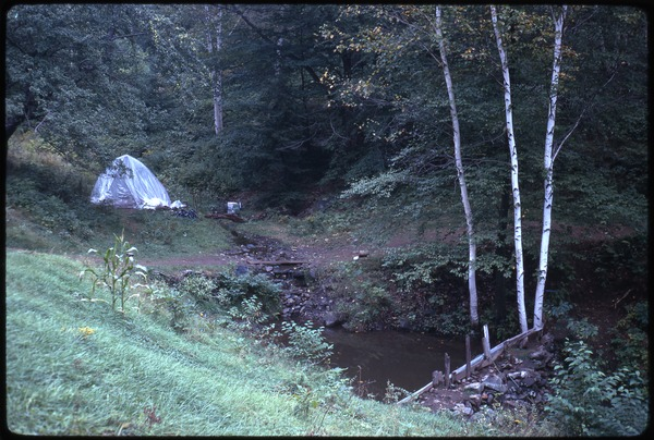 Tent made of plastic sheeting by the side of a stream, Johnson Pasture Commune, August 1969