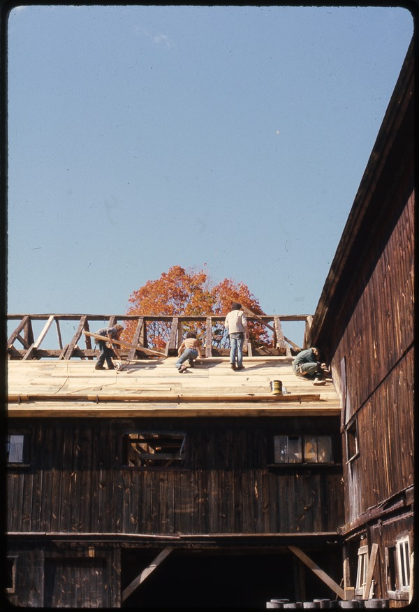 Roofing work on the barn at Montague Farm Commune, October 1976