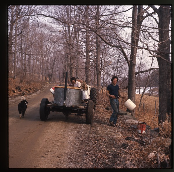 Tractor collecting sap buckets during sugaring, Montague Farm Commune, April 1977