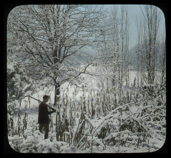 Frank A. Waugh's Garden in 1920: young man with rifle in snow-covered landscape, 1920