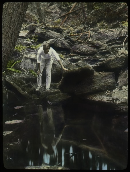 Holland Glen (young man observing woodland stream pool), ca. 1925