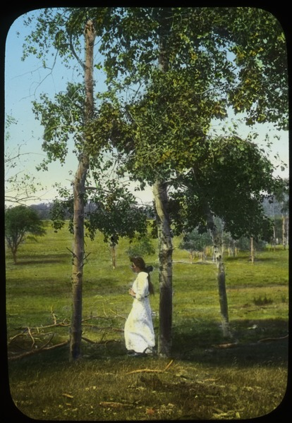 Woman standing by poplars, undated