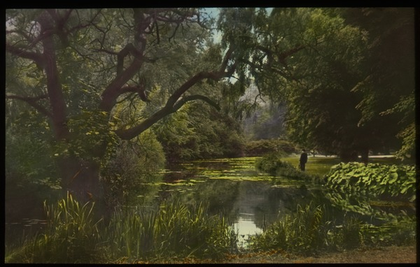 At Hampton Court (man by water surrounded by trees, cattails, water lilies, other aquatic plants), ca. 1925