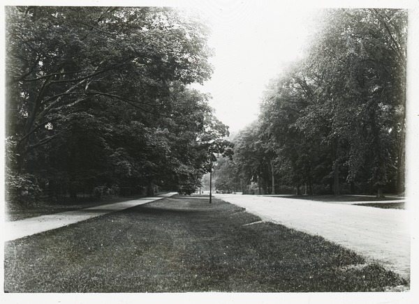 Sidewalk, wide verge, and street in unidentified town, ca. 1920