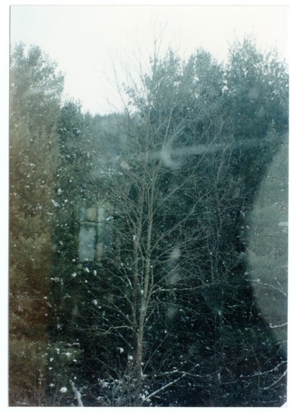 Organic Farmers Associations Council meeting: view of snow through a window, December 1989