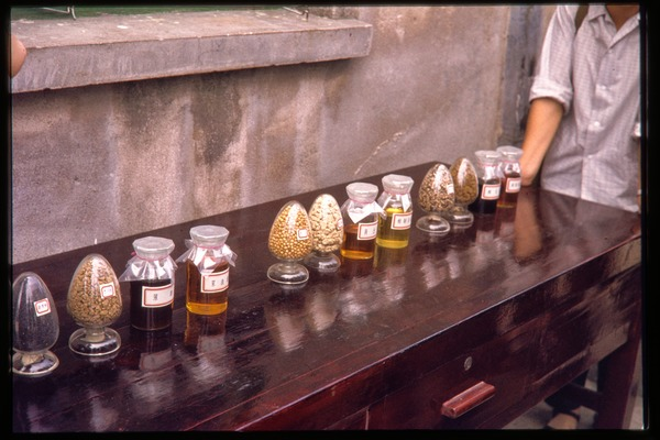 Oil processing plant: samples of oils, June 1978