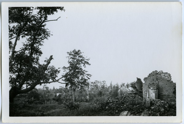Ruins and revegetation, Thái Bình City, May 1968