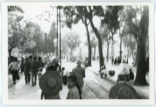 Street scene, Old Quarter, May 1968